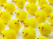 Abundance Of Easter Chicks — Стоковое фото
