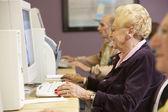 Senior vrouw met behulp van computer — Stockfoto