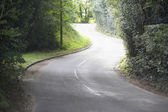 Winding Country Road Sided By Hedges — Stock Photo