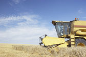 Combine Harvester Working In Field — Stock Photo
