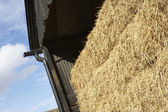 Hay Bales Stored In Barn — Stock Photo
