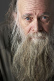 Senior Man With Long Beard — Stock Photo