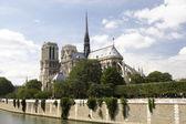 Katedrála notre dame, paříž — Stock fotografie