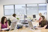 Women working in an office — Stock Photo