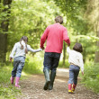 Family walking on path holding hands smiling — Stock Photo