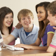 Teenagers on Computer at Home — Stock Photo #4814679