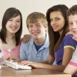Teenagers on Computer at Home — Stock Photo #4814681