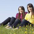 Twin Teenage Girls Sitting In Summer Meadow — Stock Photo