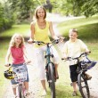 Mother and children riding bikes in countryside — Stock Photo