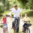 Foto Stock: Father and children riding bikes in countryside