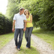 Middle aged couple walking in countryside — Stock Photo #4815380