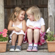 Two Young Girls Playing in Wooden House - Foto Stock