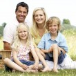 Family having picnic in countryside — Stock Photo #4815610