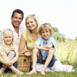 Family having picnic in countryside — Stock Photo #4815611