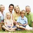 Family having picnic in countryside — Stock Photo #4815612