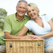 Mature couple having picnic in countryside — Stock Photo