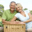 Mature couple having picnic in countryside — Stock Photo #4815616