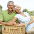 Mature couple having picnic in countryside — Stock Photo #4815617