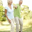 Mature couple walking in countryside — Stock Photo #4815672
