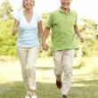 Stock Photo: Mature couple walking in countryside