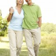 Mature couple walking in countryside — Stock Photo #4815675