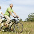 Mature couple riding tandem — Stockfoto