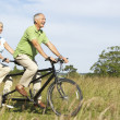 Foto Stock: Mature couple riding tandem
