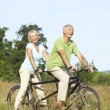 图库照片: Mature couple riding tandem