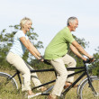 Mature couple riding tandem — Stock fotografie
