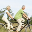 ストック写真: Mature couple riding tandem