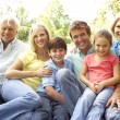 Extended Group Portrait Of Family Enjoying Day In Park — Stock Photo