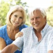Portrait Of Senior Couple In Park — Stock Photo #4815764