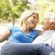 Portrait Of Senior Couple Enjoying Day In Park - Stock Photo