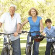 Grandparents And Grandson On Cycle Ride In Park — Stock Photo #4815802