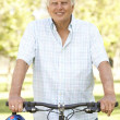 Senior Man On Cycle Ride In Park — Stock Photo