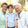 Grandfather With Father And Son In Park — Stock Photo #4815824
