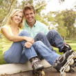 Couple Putting On In Line Skates In Park — Stock Photo