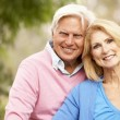 Portrait Of Senior Couple — Stock Photo #4815854
