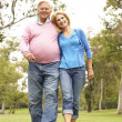Senior Couple Walking In Park — Stock Photo #4815861