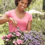 Young Woman Gardening — Stock Photo #4816000