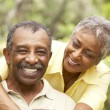 Senior Couple Outdoors Hugging — Stock Photo