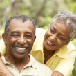 Senior Couple Outdoors Hugging — Stock Photo #4816008
