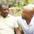 Senior Man Having Serious Conversation Adult Son — Stock Photo #4816010