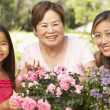 Granddaughter With Grandmother And Mother Gardening Together - Stock Photo