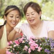 Mother With Adult Daughter Gardening Together - Stock Photo