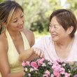 Mother With Adult Daughter Gardening Together - ストック写真