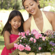 Mother And Daughter Gardening Together - ストック写真