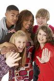 Studio Portrait Of Five Teenage Friends — Stock Photo