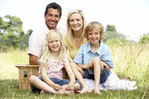 Family having picnic in countryside — Stock Photo