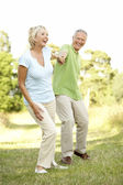 Mature couple walking in countryside — Stock Photo